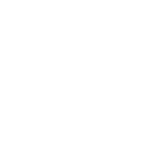 Francesco_pasi_logo
